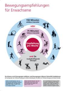 Grafik Bewegungsempfehlung für Erwachsene